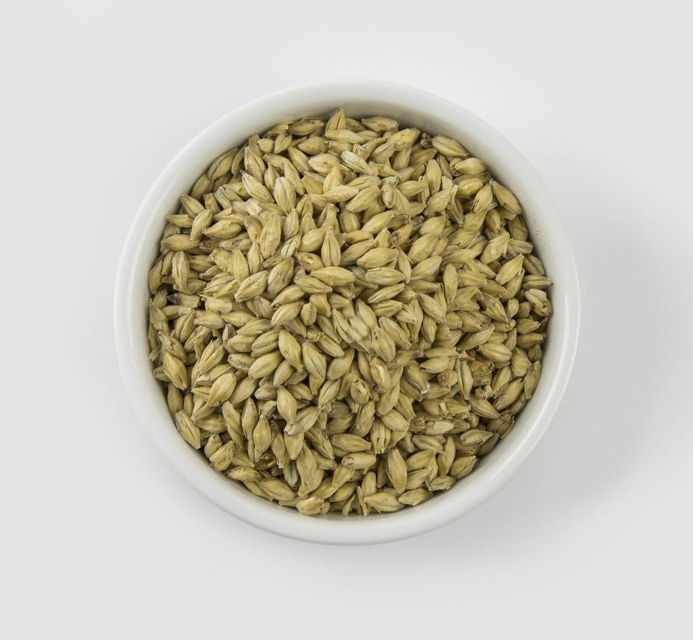 Grain Malts